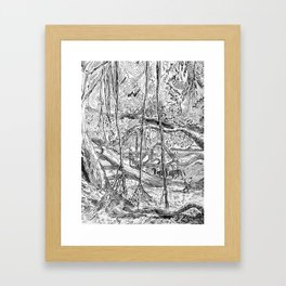 Banyan 3 Framed Art Print