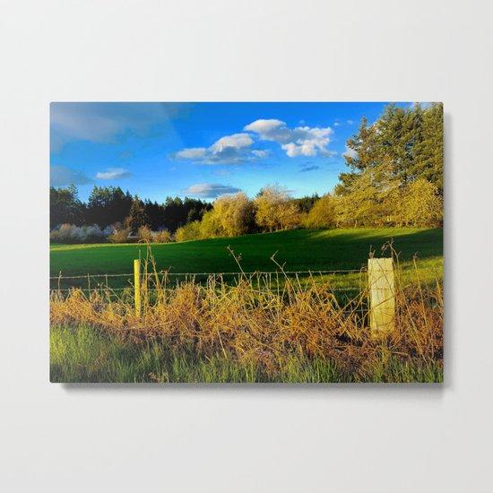 Golden Evening Light Across A Field Metal Print