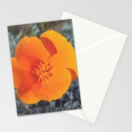 Golden Petals Stationery Cards