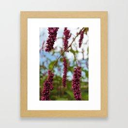Magenta Skies Framed Art Print