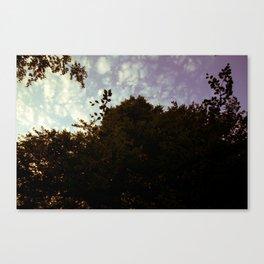 Sky Scape pt 2 Canvas Print