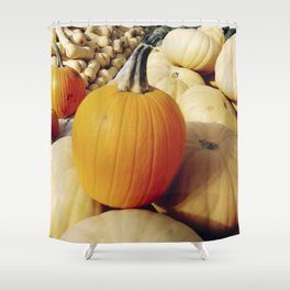 Freshly picked assortment of fall pumpkins and squash Shower Curtain