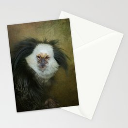 Geoffroy's Marmoset Stationery Cards