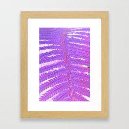 #143 Framed Art Print