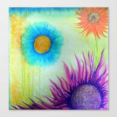 coronas Canvas Print