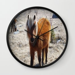 Pretty Pony 1 Wall Clock