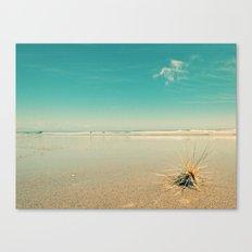 Beach Star Canvas Print
