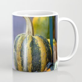 Gourds on Sidewalk Coffee Mug