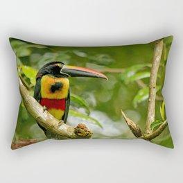 Fiery Billed Aracari Rectangular Pillow