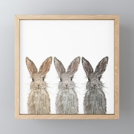Triple Bunnies Framed Mini Art Print