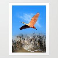 Morning Flight 1 Art Print