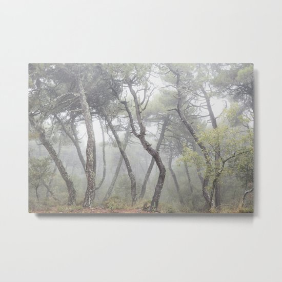 """Forest dance"". Into the foggy woods... Metal Print"