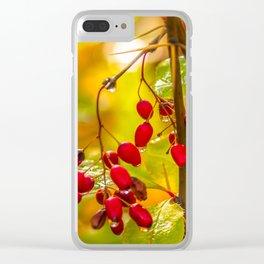 Autumn drops Clear iPhone Case