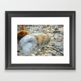 Before The Sea Framed Art Print