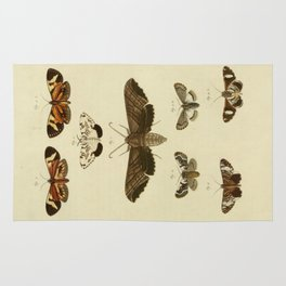 Vintage Moths Rug
