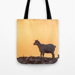 Goat baby sunset E5-5789 Tote Bag