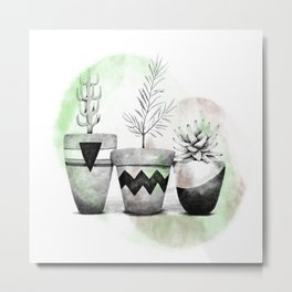 Trio of succulents Metal Print