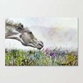 Shake It Off special textured Canvas Print