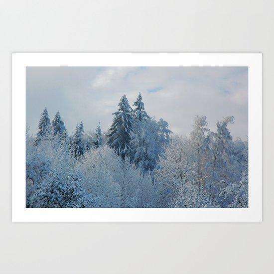 After the snowfall Art Print