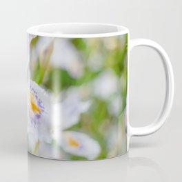 Fringed iris Coffee Mug