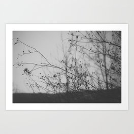 Not Everything Is Black and White Art Print