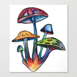 Cluster of Coloured Shrooms Canvas Print