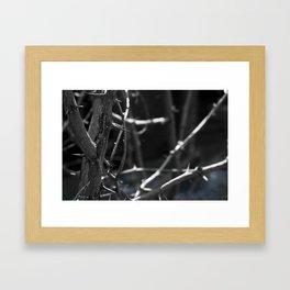 Thorns blue Framed Art Print