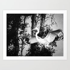 Great Egret In The Trees Art Print