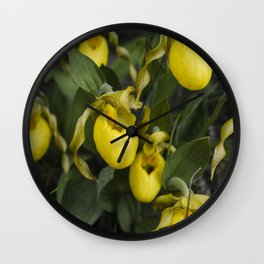 Lady Slippers Wall Clock