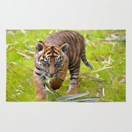 Tiger Cub on the Move Rug