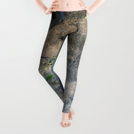 Painted grunge wall and tree Leggings