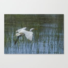 Grace Over Water Canvas Print