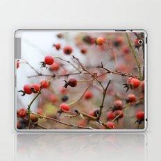 Winter Rosehips Laptop & iPad Skin