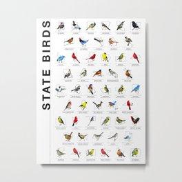 50 State Birds (White) Metal Print
