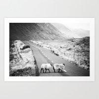 irish Art Prints featuring Irish Sheeps by GF Fine Art Photography