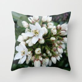 white flower -bloom,blossom,petal,floral,leaves,flor,garden,nature,plant. Throw Pillow
