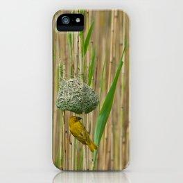 Golden Weavers iPhone Case
