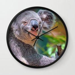 Winking Koala Wall Clock