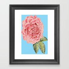 Peony in blue Framed Art Print