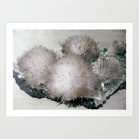 furry Art Prints featuring Furry Crystal  by POPCORE