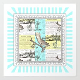 Paris Cockatoo's Colonial Dream Art Print