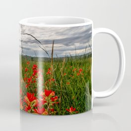Brighten the Day - Indian Paintbrush Wildflowers in Eastern Oklahoma Coffee Mug