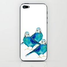 Blue budgie watercolor iPhone & iPod Skin