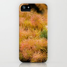 Lovely colors iPhone Case