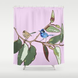 Splendid Fairy-wren Malurus splendens Shower Curtain