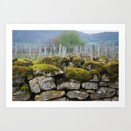 Vineyard Wall, Eastern France Art Print