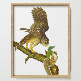 Barred Owl John James Audubon Scientific Vintage Illustrations Of American Birds Serving Tray