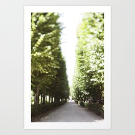 The Garden Paths in France Art Print