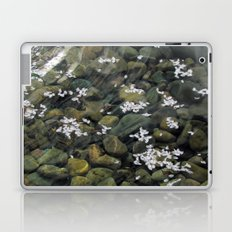 Fallen Blossoms Laptop & iPad Skin