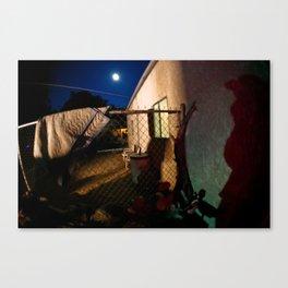 Full moon and lurking shadows Canvas Print